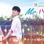 韓国BLドラマ【Mr.ハート】キャスト、ネタバレ有各話あらすじ、視聴感想